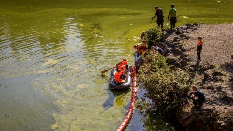 مجهولون يسكبون زيتاً في بحيرة و يحاولون إشعالها