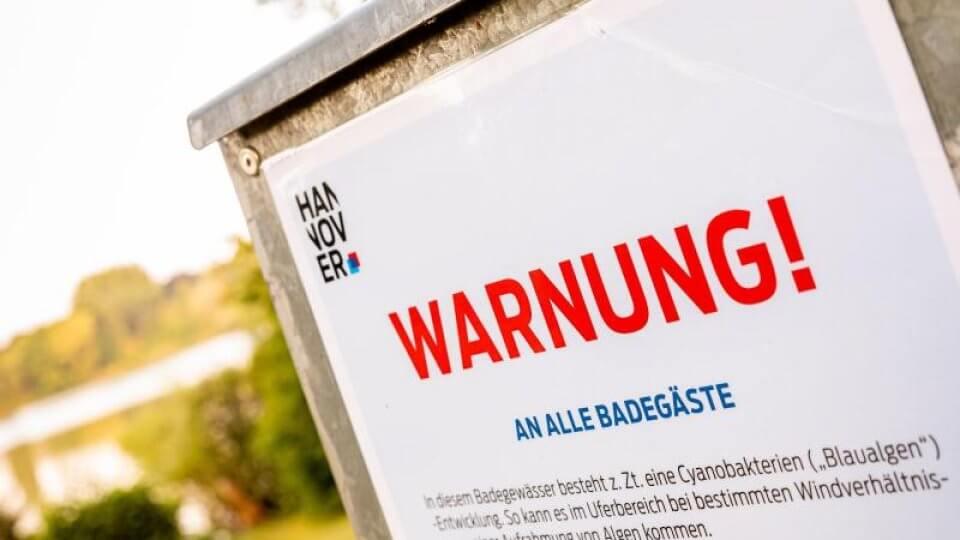 مياه ملوثة بالطحالب السامة في هذه المناطق الألمانية