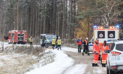 مأساة في غابة ألمانية جراء سقوط شجرة